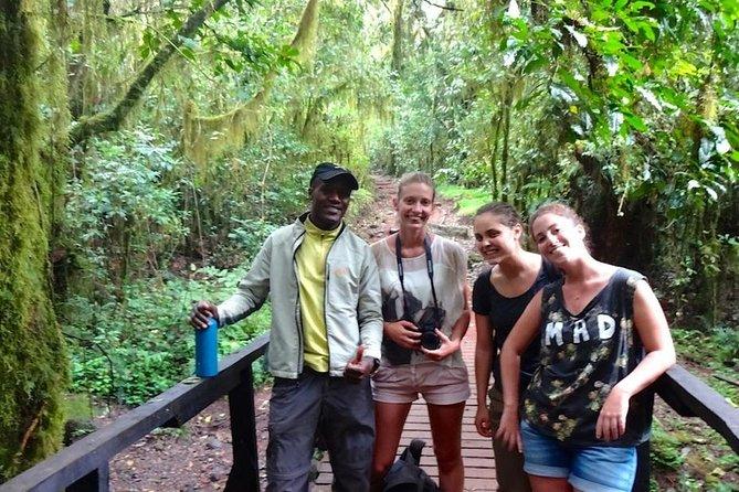 Mount Kilimanjaro Day Tour