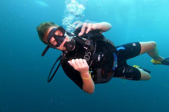 Scuba Diving Trip to Sail Rock From Koh Phangan (Certified Divers)