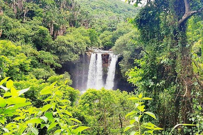 Cool Mauritius hike