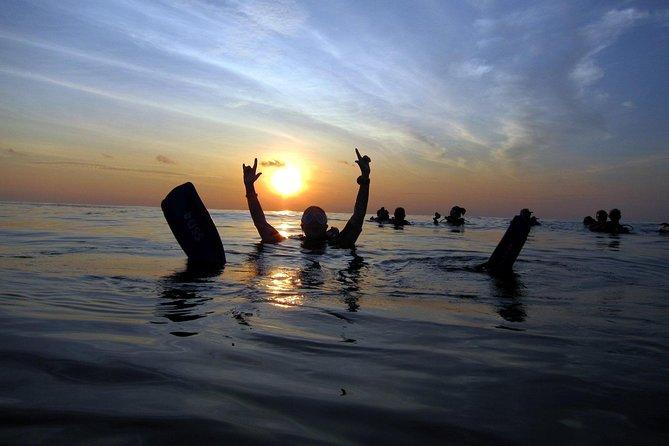 Scuba Diving Kata Beach Night Dive for Certified Divers