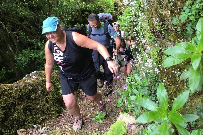 Pura aventura, a melhor seleção de passeios a pé e Levadas na Madeira!