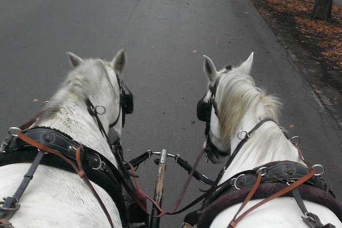 70 Minutes Trip--Carriage Ride by Fiaker Wien