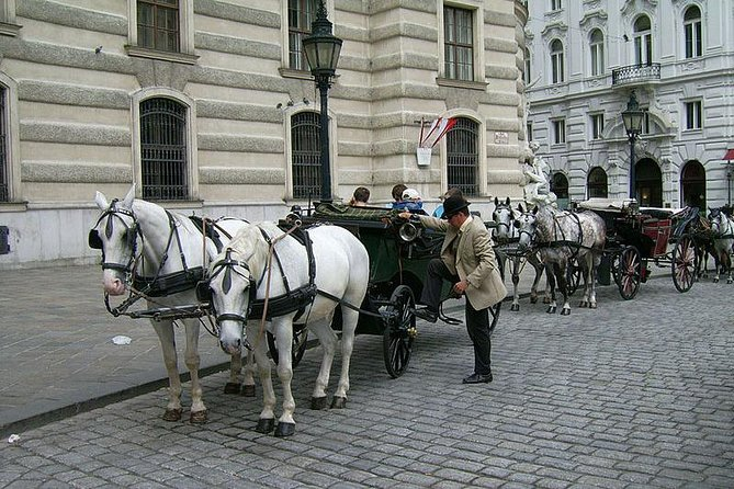45 Minutes Trip--Carriage Ride by Fiaker Wien