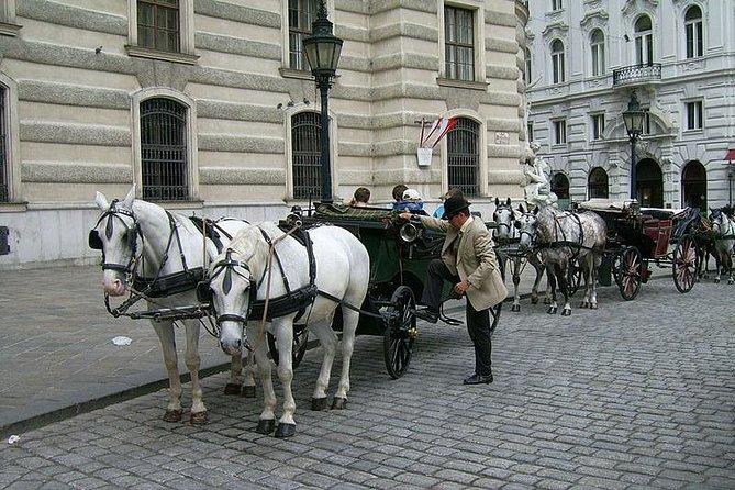 45 Minutes Trip--Carriage Ride by Fiaker Wien