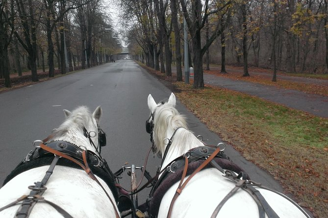 Prater-Transfer--Carriage Ride by Fiaker Wien photo 3