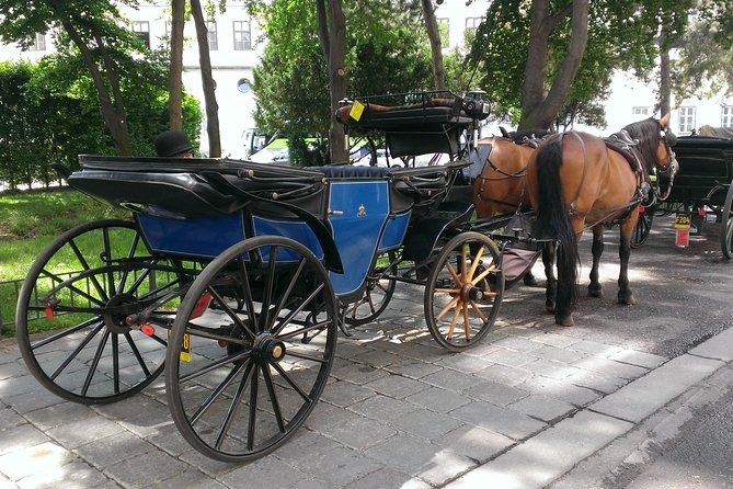 30 Minutes Trip--Carriage Ride by Fiaker Wien
