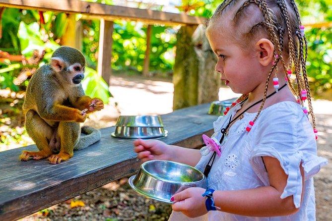 Monkeyland & Plantation Safari Full Day from Juan Dolio
