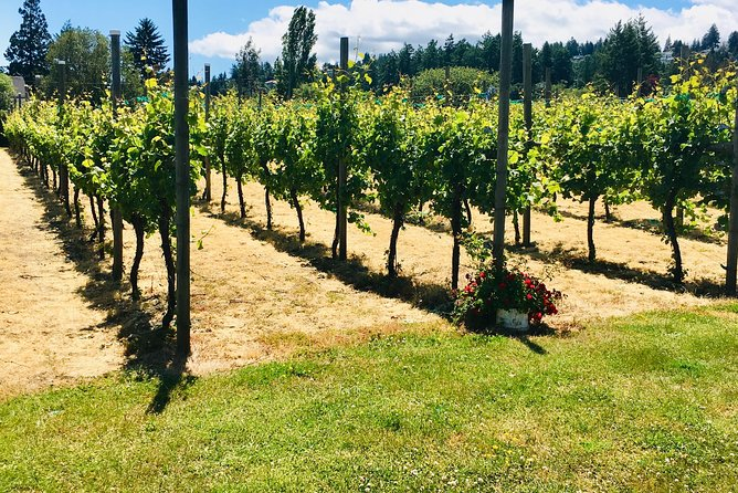 Private Small Group Local Wine and Cider Tasting, Central and North Saanich