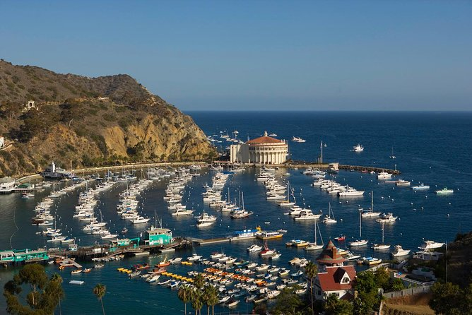 Catalina Island Day Trip from Los Angeles with Undersea Adventure