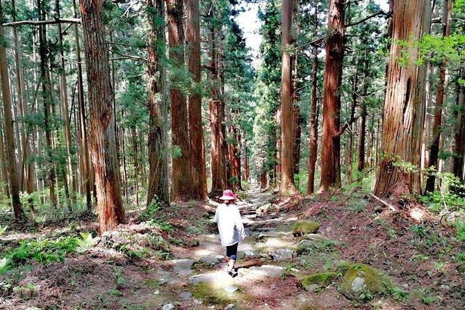 8 Nights Shin-Etsu Trail Full Track Hike - Nozawa Onsen, Japan
