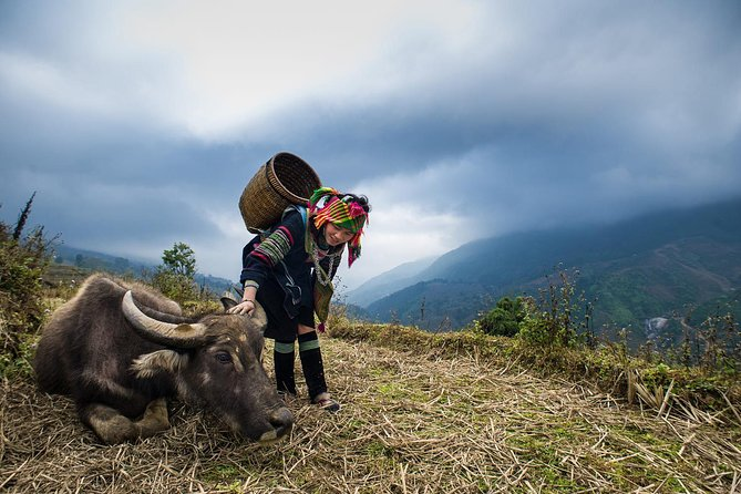 Sapa 3 Days 2 Nights By Limousine, Overnight In Hotel