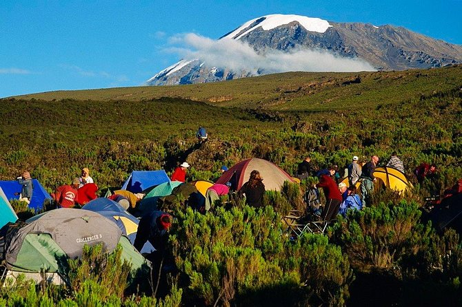 Mountain Kilimanjaro Climbing 7 Days Machame Route