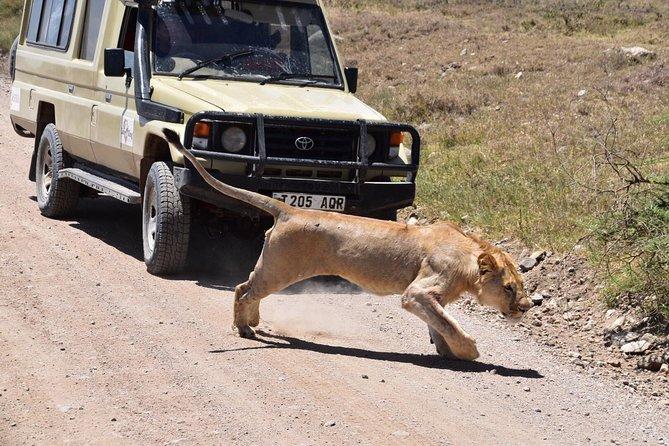 3 Days Tanzania Safari ( Tarangire, Ngorongoro & Manyara) with Africa Natural