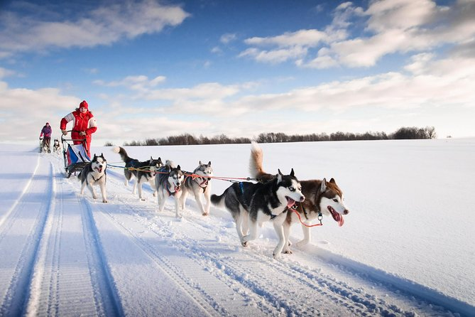 Snowmobile Safari to Husky Camp from Rovaniemi