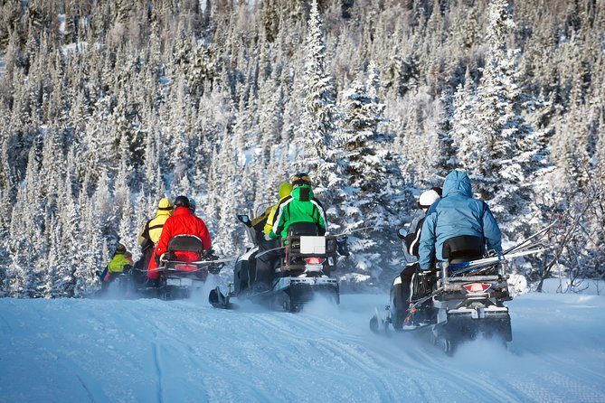 Private Northern Lights Snowmobile Safari from Rovaniemi