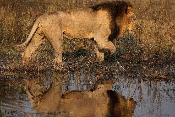 12 Days -Camping Safari; Vic Falls, Chobe, Savuti, Moremi, Okavango, Kalahari