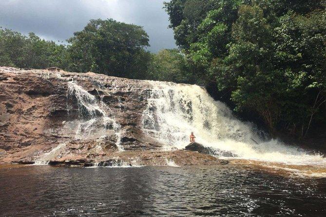 Tour to Cachoeiras Presidente Figueiredo - From Manaus