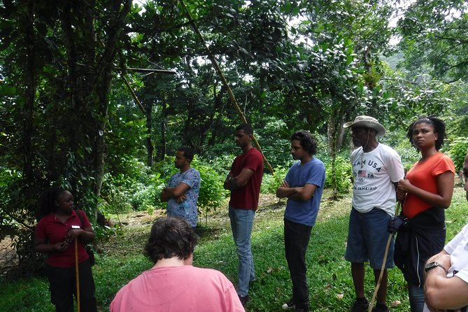 Asa Wright Nature Centre Guided Tour from Port of Spain photo 3