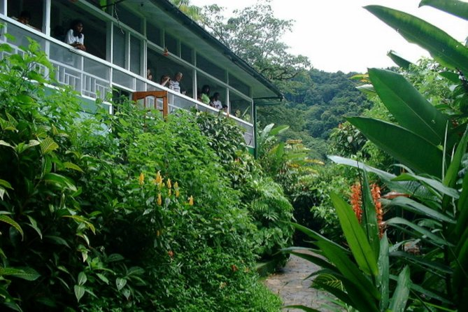 Asa Wright Nature Centre Guided Tour from Port of Spain photo 2
