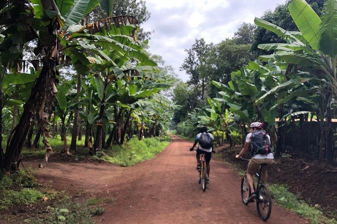 Chagga Villages in Mount Kilimanjaro Cycling Day Trip