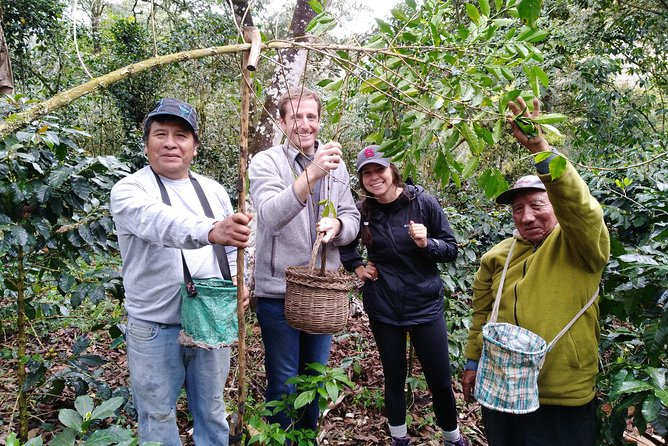 Coffee or Cocoa tour and Machu Picchu 2d/1n photo 7