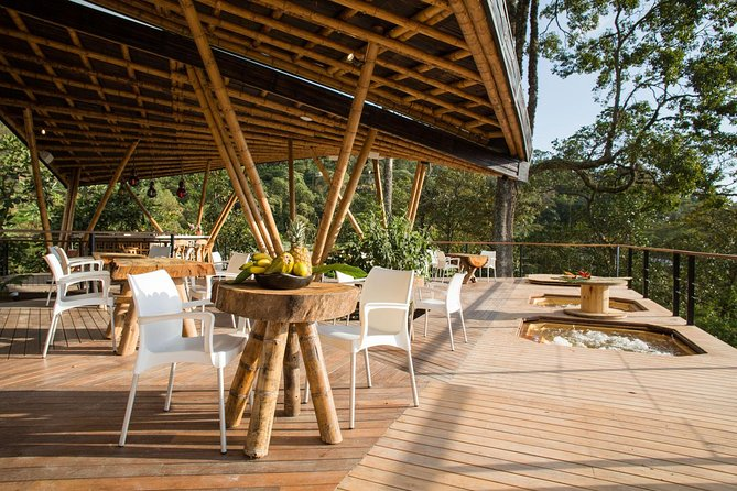 Private Luxury Coffee Plantation Tour. Includes lunch & coffee tasting.