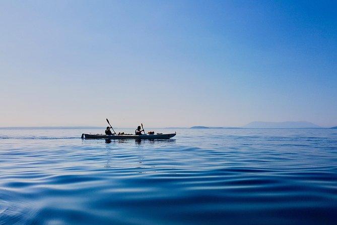 Kayaking Tour in The San Juan Islands
