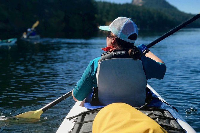 Kayaking Tour in The San Juan Islands photo 5