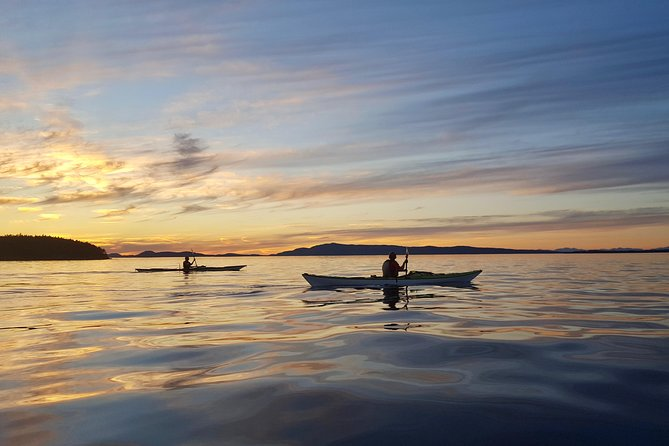 Kayaking Tour in The San Juan Islands photo 9