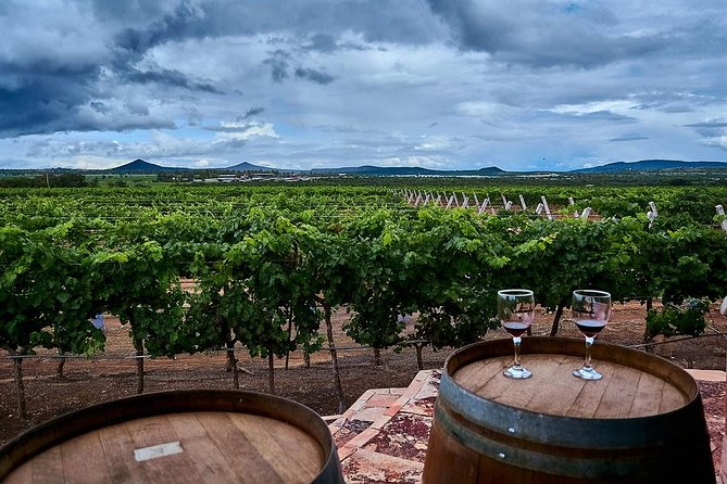 From Mexico City: Wine & Cheese Private Tour to Queretaro