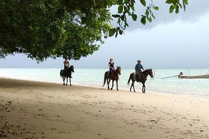 Sunset Horse Riding Tour at Ao Nam Mao Beach Krabi photo 7