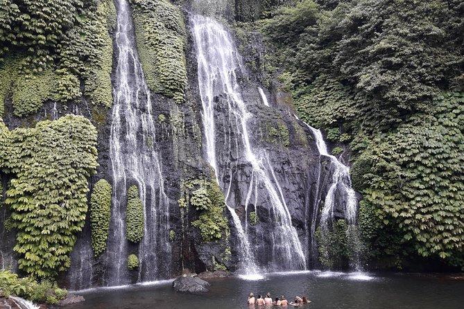Full Day Tour: Visit Tanah Lot, Jatiluwih, Banyu Mala Waterfall, Bedugul Temple
