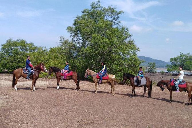 Sunset Horse Riding Tour at Ao Nam Mao Beach Krabi photo 4