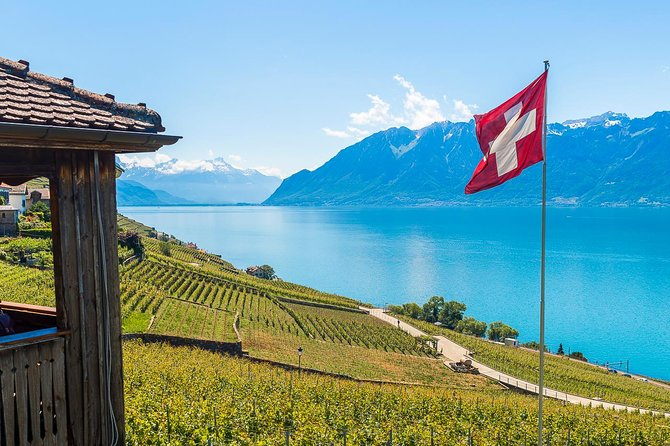 Panoramic Wine Tour From Montreux