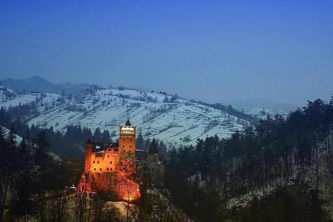 One day trip Bear Sanctuary, Dracula Castle, Rasnov Fortress from Brasov photo 17