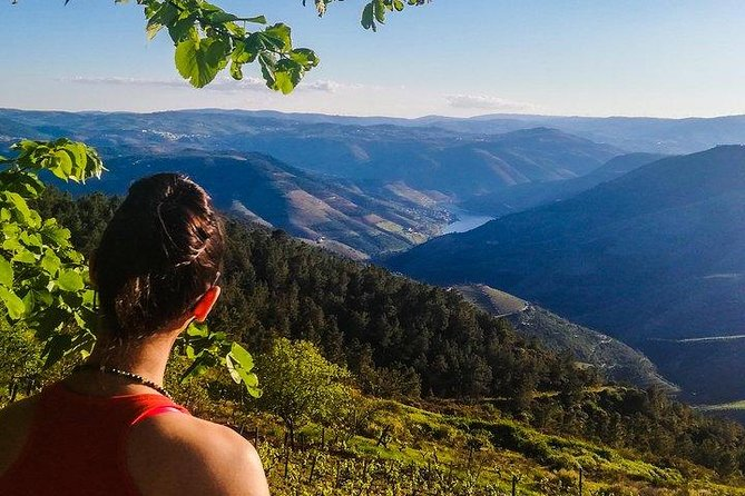 Off The Beaten Track Douro Valley Tour - Private Tour - All Included