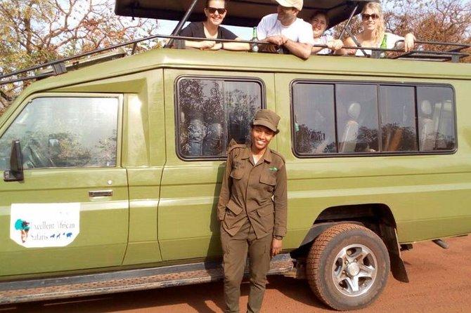 1 Day Akagera National Park