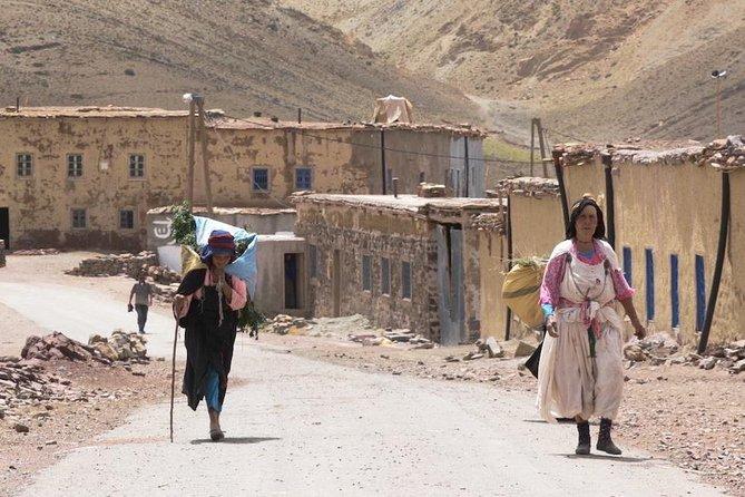 Atlas Mountains Day Tour with Camel Ride