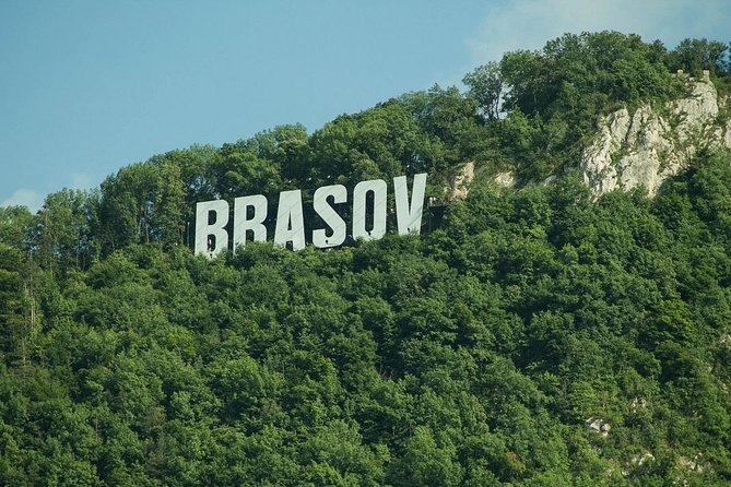 One day trip Bear Sanctuary, Dracula Castle, Rasnov Fortress from Brasov photo 4