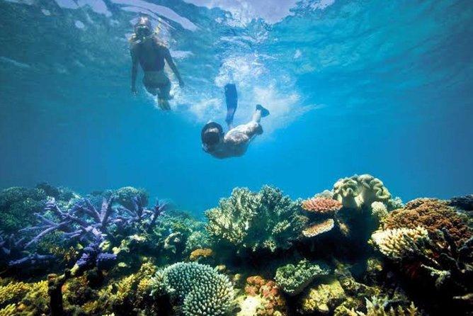 Bali Snorkeling At Blue Lagoon Padang Bai