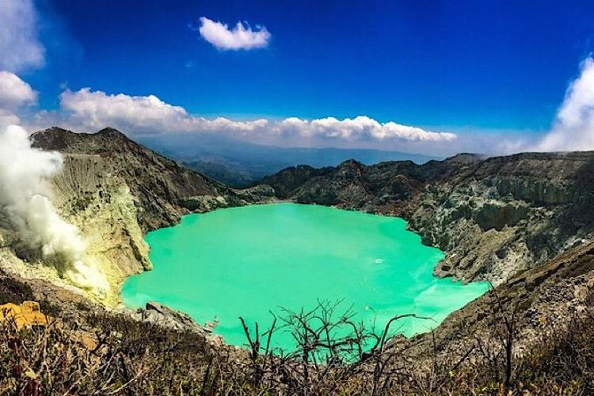 Treking Ijen bluefire