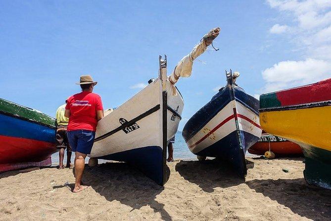 Coastal Beaches, Monte Verde, and Villages Tour, São Vicente