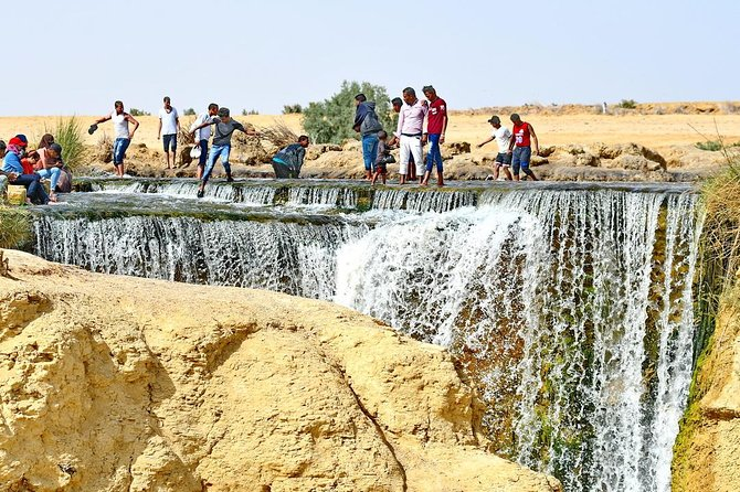 Private Full Day Trip to the Valley of the Whales & Fayoum Oasis photo 14