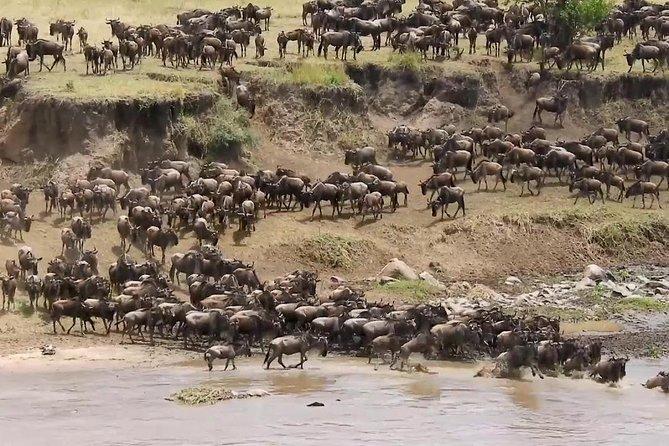 Classic Kenya and Tanzania Migration Safari 2020