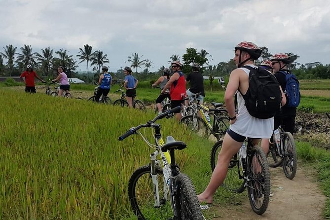 Kintamani volcano and Ubud Cycling and Biking Trail Through the Essence of Bali