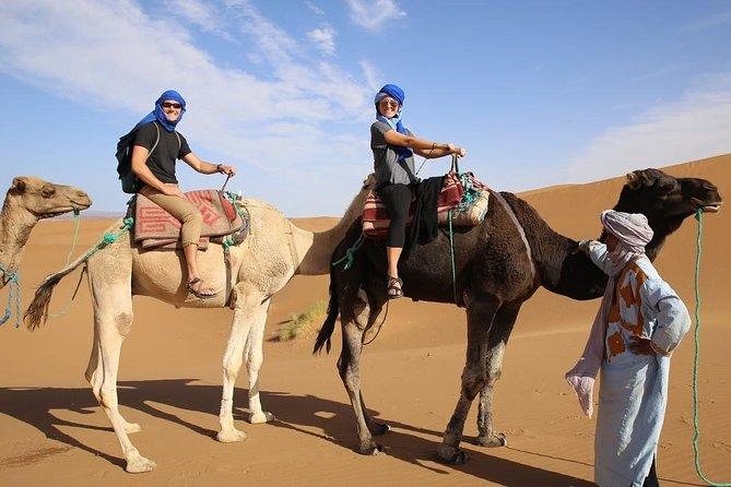 7 H Super Safari, Quad, Spider Car, Jeep, Terrarium, Camel, Shisha, Lunch...