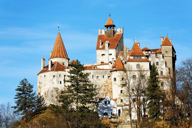 Dracula's Castle   All-inclusive 1 Day Trip From Cluj Napoca