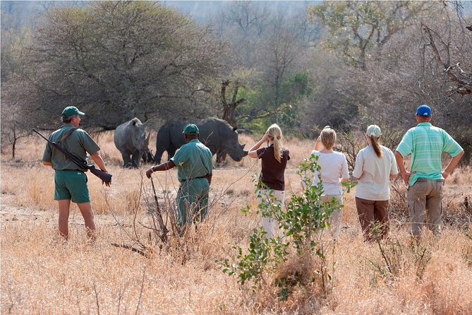 Rhino Walk In The Mosi-Oa-Tunya National Park