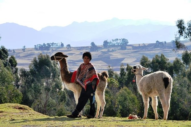 The Heart of the Sacred Valley - Community Conection & Llama Hike