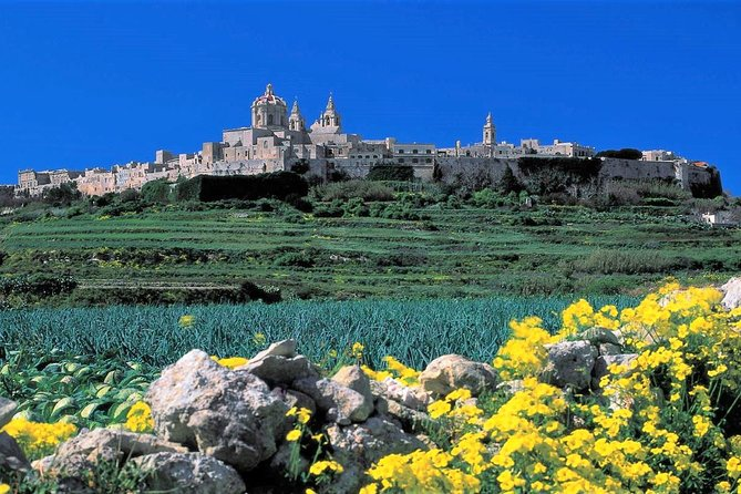 Mdina, Dingli cliffs and San Anton Gardens guided tour photo 1